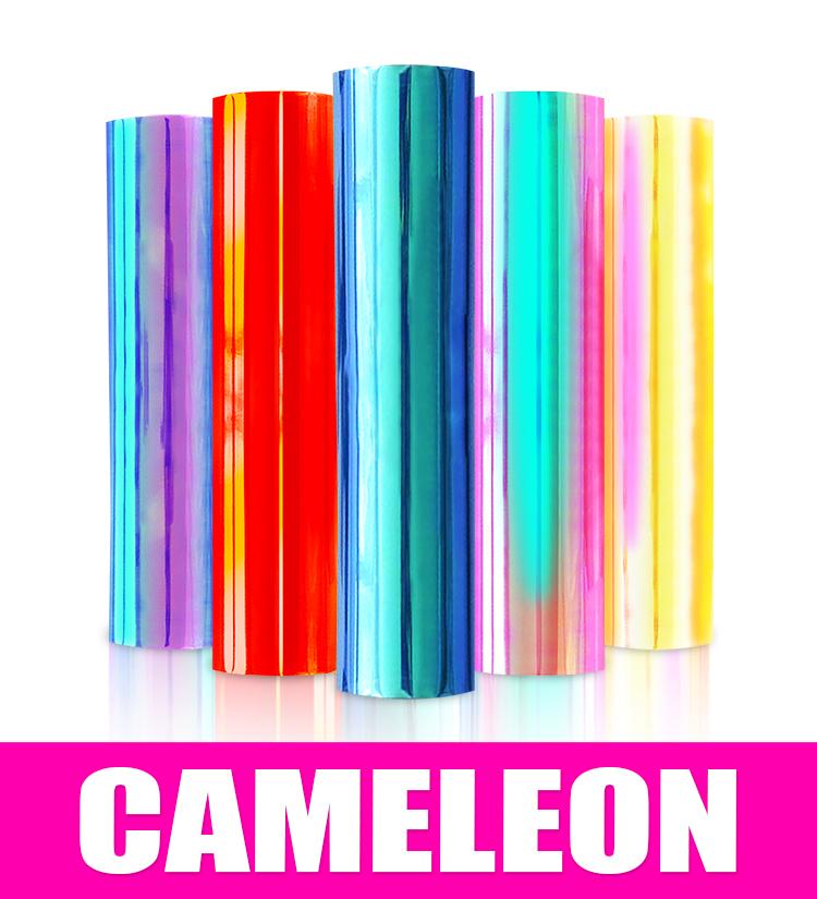 Camaleon Sign Vinyl