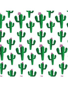 Cactus Sign Vinyl