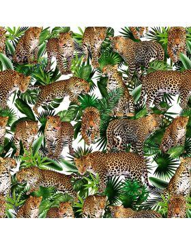 Leopard Collage White Sign Vinyl