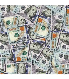 $100 Bill Vinyl