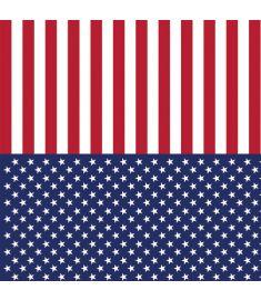 American Flag Vinyl