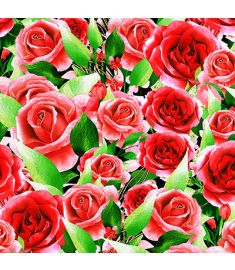 Vibrant Roses Vinyl